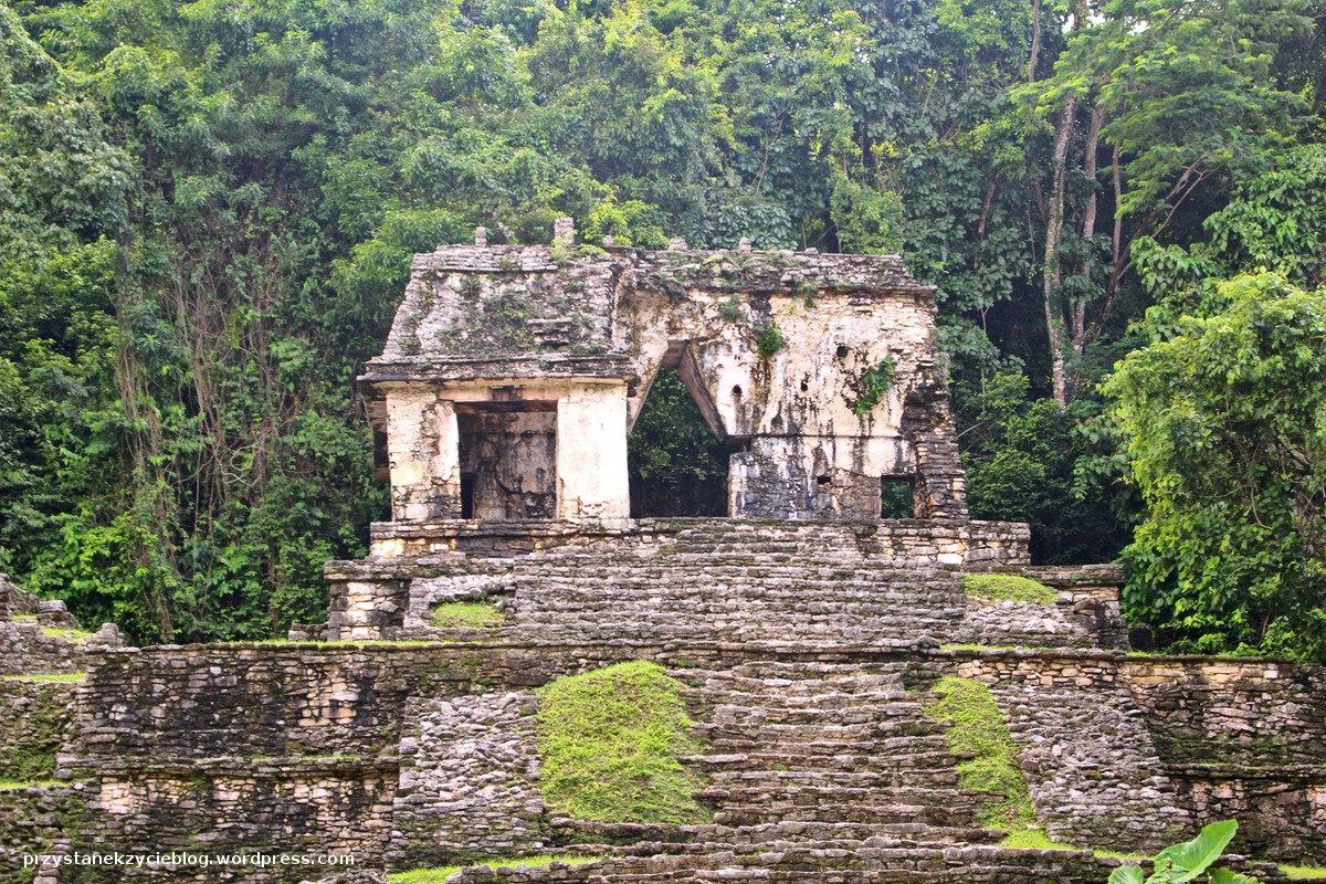 grobowiec czerwonej krolowy_palenque_ruiny_meksyk