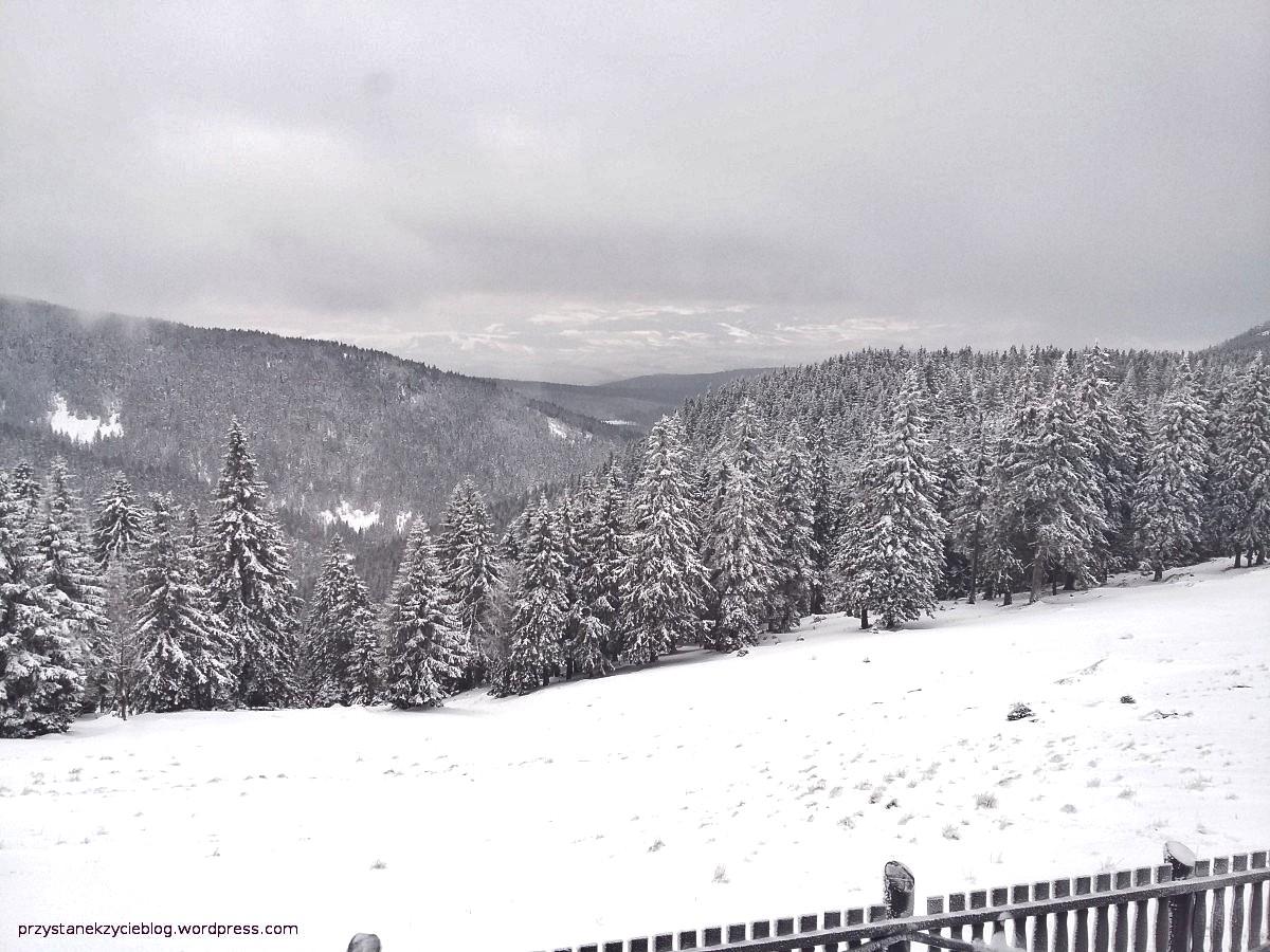 schronisko pod snieznikiem_widok2
