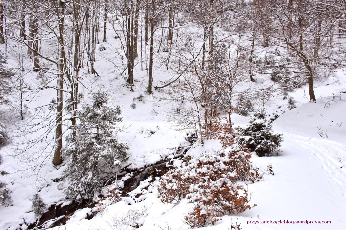 szlak na snieznik4